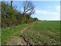 TQ6592 : Field edge running south from Sudburys Farm Road by Robin Webster
