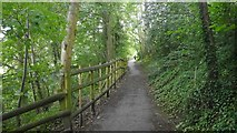 SO5074 : Castle Walk by Richard Webb