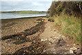 SX7440 : Wareham Point by Derek Harper