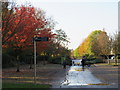 TQ3377 : Autumn colour in Burgess Park, near Camberwell by Malc McDonald
