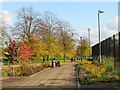 TQ3277 : Autumn in Burgess Park by Malc McDonald