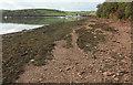 SX7540 : Foreshore near Wareham Point by Derek Harper