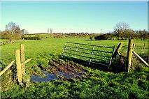H5371 : Muddy between fields, Bancran by Kenneth  Allen