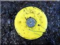 H5371 : Survey mark along Dreenan Road by Kenneth  Allen