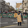 TQ3079 : Protester, London by Rossographer