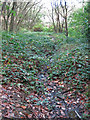 TQ1092 : Another small drain in Oxhey Wood by Mike Quinn