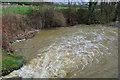 TQ3625 : River Ouse below East Mascalls Bridge by Robin Webster