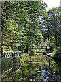 SK0048 : Changeline Bridge east of Consall in Staffordshire by Roger  Kidd