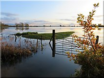 TL4279 : Flat and flooded at Sutton Gault - The Ouse Washes by Richard Humphrey