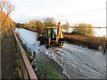 TL4279 : JCB on The Causeway at Sutton Gault - The Ouse Washes by Richard Humphrey
