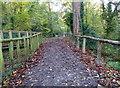 TR0062 : Oare Gunpowder Works Country Park, Faversham by pam fray
