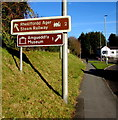 SN4221 : Two brown signs on a bank alongside the A484 Tanerdy, Carmarthen by Jaggery