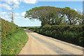 SS5528 : Trees west of Fire Beacon Cross by Derek Harper