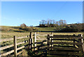NS6112 : Kissing Gate and Path to New Cumnock by Billy McCrorie