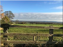 SJ3654 : View from junction of Vicarage and Wynnstay Lanes by Richard Hoare
