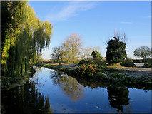 TL4352 : The River Cam near Hauxton by John Sutton