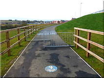 SP7288 : New path to Wellington Place by Mat Fascione
