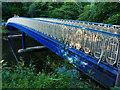 NS5667 : Footbridge over the river Kelvin, Glasgow Botanic Gardens by Stephen Craven