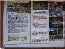 NY4624 : Pooley Bridge information board by David Purchase