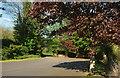 SS5629 : End of church car park, Tawstock by Derek Harper
