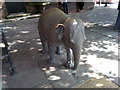 SJ4066 : Janya the baby elephant on Northgate Street, Chester by Meirion
