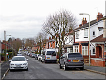 SO9096 : Belmont Road in Penn, Wolverhampton by Roger  Kidd
