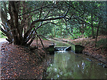 TQ1293 : Weir on Hartsbourne Stream by Mike Quinn