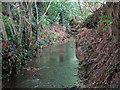 TQ1293 : Hartsbourne Stream (2) by Mike Quinn