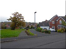 SO8856 : View on Gawtree Way, Lyppard Habington by Chris Allen