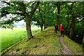 SO2591 : Offa's Dyke near Lower Cwm by Jeff Buck