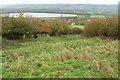 ST5467 : Grassland above Little Down Wood by Derek Harper