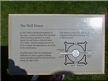 ST5545 : Bishop's Palace, Wells [18] by Michael Dibb