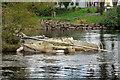 NS3981 : Sunken Boat at Balloch by David Dixon