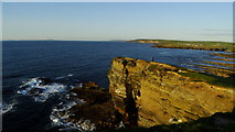 HY2328 : Brough of Birsay - cliffs along northern side by Colin Park