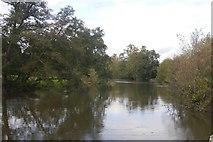 SO5074 : River Teme, Linney by Richard Webb