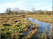 TG2105 : Drainage ditch on Marston Marsh by Evelyn Simak