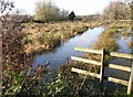 TG2105 : Flooded pastures on Marston Marsh by Evelyn Simak