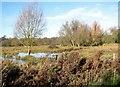 TG2105 : The eastern edge of Marston Marsh by Evelyn Simak