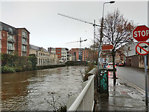 W6771 : River Lee, south channel, Cork by Robin Webster