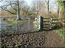 TG2105 : Gate on the path traversing Marston Marsh by Evelyn Simak