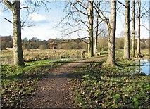 TG2105 : Path to Marston Lane by Evelyn Simak
