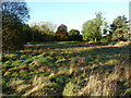 SP0483 : Metchley Roman Fort site by Richard Law