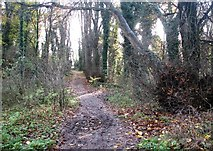 TG2105 : This way to Marston Lane by Evelyn Simak