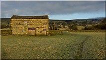 SD9490 : Barn, Askrigg Bottoms by Mick Garratt