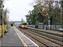 W7871 : Train arriving at Fota by Robin Webster