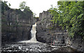 NY8828 : High Force, River Tees by habiloid