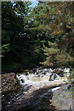 NY9027 : River Tees seen from Winch Bridge by habiloid