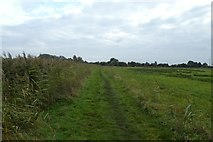 SE7844 : Path next to the canal by DS Pugh