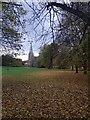 SE6250 : Heslington Church by DS Pugh