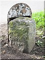 NZ3116 : Old Milestone by the A1150 in Great Burdon by Mike Rayner